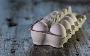 צריכת ביצים אינה מעלה את הסיכון למחלות לב ולשבץ מוחי, לפי מחקר