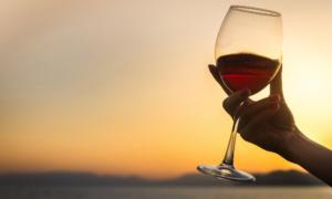 איך להחזיק כוס יין